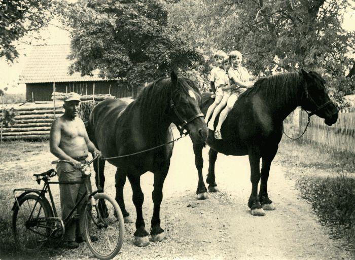 Frans Tibblin med pojkarna Zenker och hästarna Vega och Göta. 708633dc4f1e1